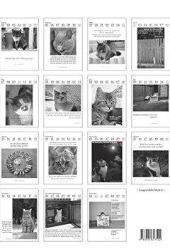 Cover von Der literarische Katzenkalender 2018: Zweifarbiger Wochenkalender