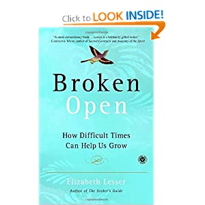 Broken Open : How Difficult Times Can Help Us Grow Elizabeth Lesser