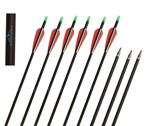 Huntingdoor Carbon 31-Inch Arrows with Field Points Replaceable Tips