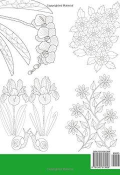 Coloriage Adulte Coeur.Livres De Coloriage Anti Stress Detente Au Coeur Des Plantes