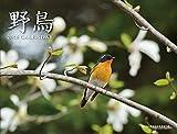 カレンダー2015 野鳥 ([カレンダー])