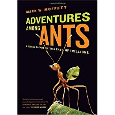 book ants