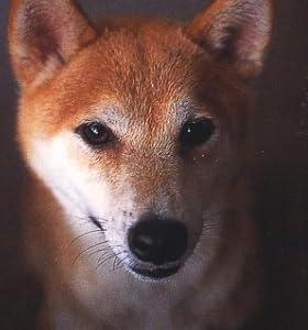 犬語の話し方 (文春文庫)
