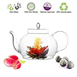 Blooming Tea Glass Teapot Gourmet Gift Set Polo 45oz/1330ml with Fab Flowering Tea (4 Blooms)