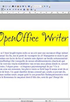 Livres Couvertures de OpenOffice Édition Spéciale pour Windows 10-8-7-Vista-XP   Logiciel pour PC et manuel d'utilisation au format PDF   Alternative à Microsoft Office   Compatible avec Word, Excel et PowerPoint