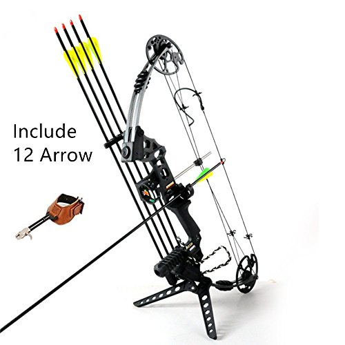 Compound Archery Bow Set Package Hunting Bow 20-70lbs Compound Bow with Max Speed 320fps (Black)