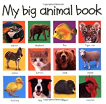 My Big Animal Book (Priddy Bicknell Big Ideas for Little People)