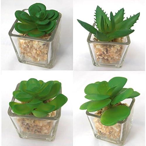 (K-JOY) 小さな 人工観葉植物 フェイク グリーン ミニ ポット / 光触媒 植物 インテリア 鉢 セット F268 (7-12 透明 6個セット)