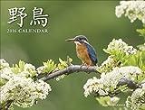 カレンダー2016 野鳥
