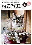 ねこ写真4 NEKO