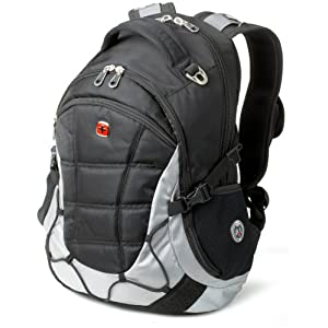 SwissGear Computer Backpack (Black/Light Gray)