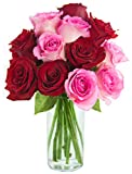 Bouquet of Long Stemmed Red and Pink Roses (Dozen) - With Vase