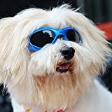 Pet Dog Sunglasses - Protective Eyewear Goggles Small Waterproof Protection (Blue)