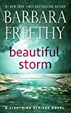 Beautiful Storm (Lightning Strikes Book 1)