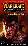 Warcraft : La Guerre des Anciens, Tome 1 : Le Puits d'Eternité