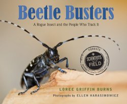 Beetle Busters (Scientists in the Field Series) by Loree Griffin Burns | Featured Book of the Day | wearewordnerds.com
