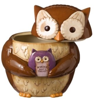 http://kitchenthings.hershoppingcircles.com/grasslands-road-crimson-hallow-owl-cookie-jar-empty/