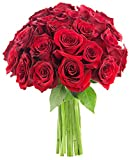 Bouquet of Long Stemmed Red Roses (Two Dozen) - The KaBloom Collection Flowers Without Vase