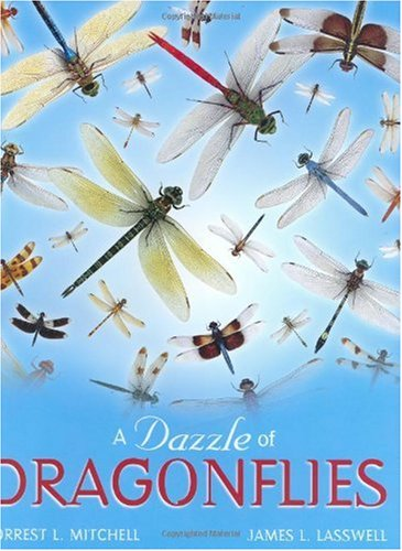Dazzle of Dragonflies cover