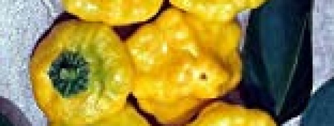 Jamaican Hot Yellow Scotch Bonnet Pepper 20 Seeds