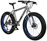 Framed Minnesota 2.0 Fat Bike Silver/Blue Sz 18in Mens