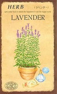 【種子】ラベンダー 種子 [0813]