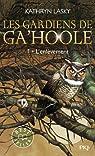 Les Gardiens de Ga'Hoole, Tome 1 : L'Enlèvement