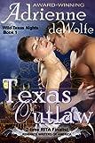 Texas Outlaw (Wild Texas Nights, Book 1)