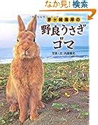茅ヶ崎海岸の野良うさぎ ゴマ