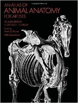 Amazon.co.jp: An Atlas of Animal Anatomy for Artists ...
