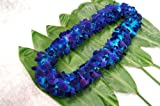 Blue Dyed Dendrobium Orchid Lei