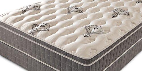 doctor s choice euro top queen mattress set sgkshglkd