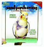 JW Pet Company Insight Sand Perch Swing Bird Toy, Regular