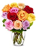 Flowers - One Dozen Rainbow Roses (FREE Vase Included)