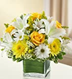 1-800-Flowers - Healing Tears - Yellow and White - Large