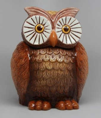 http://kitchenthings.hershoppingcircles.com/8-inch-big-eyed-owl-shaped-ceramic-cookie/
