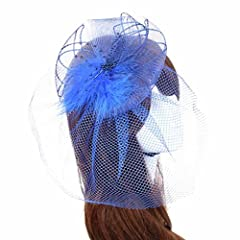 Binmer(TM)Wedding Fascinator Veil Feather Hard Yarn Headband Brides Hair (Blue)