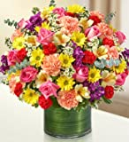 1-800-Flowers - Cherished Memories - Multicolor Bright - Large