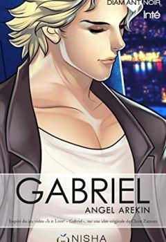 Livres Couvertures de Gabriel - Intégrale