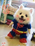 小型犬の服・スーパーマン・コスプレ衣装 (M)