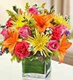 1-800-Flowers - Healing Tears - Multicolor Bright - Large