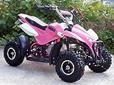 Mini Quad ATV Kinderquad 49 cc Powerquad 49ccm 2012 NEU