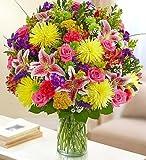 1-800-Flowers - Sincerest Sorrow Bright Arrangement - Large