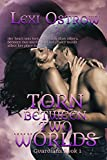 Torn Between Two Worlds (Guardians Series Book 1)