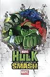 Marvel Universe Hulk: Agents of S.M.A.S.H. (Marvel Adventures/Marvel Universe)