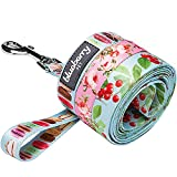 Blueberry Pet 3/8-inch by 6-Feet The Cherry Garden Turquoise Designer Nylon Dog Leash for Puppy, X-Small