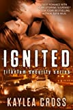 Ignited (Titanium Security Series Book 1)