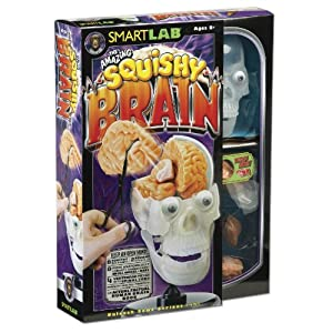 Smart Lab The Amazing Squishy Brain