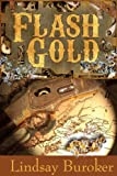 Flash Gold (The Flash Gold Chronicles Book 1)