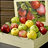 Apple Medley Gift Box - 7 lbs - The Fruit Company